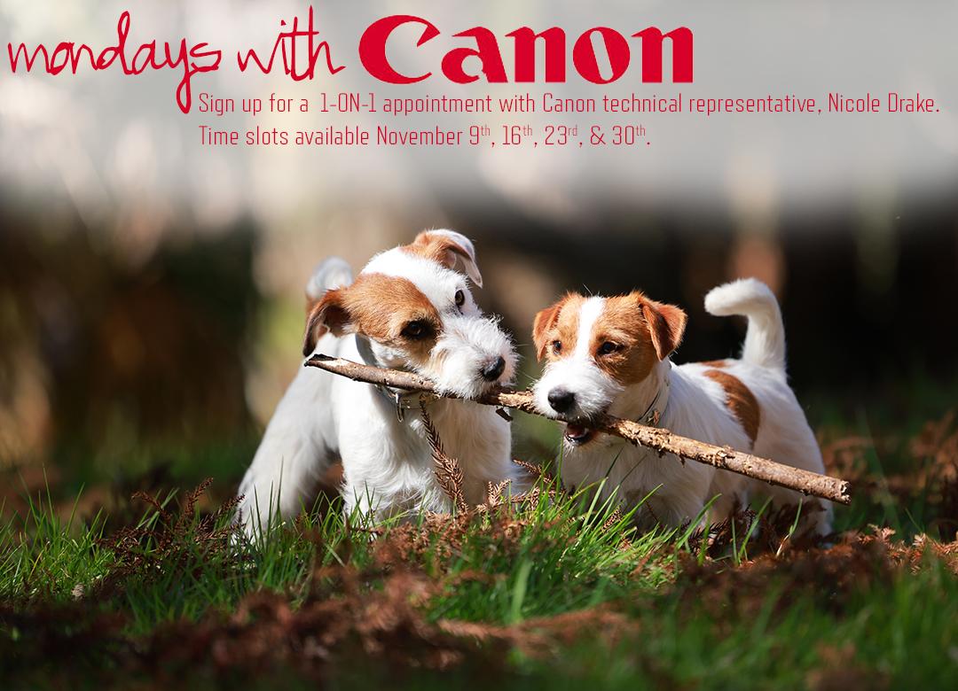 Mondays With Canon November 30