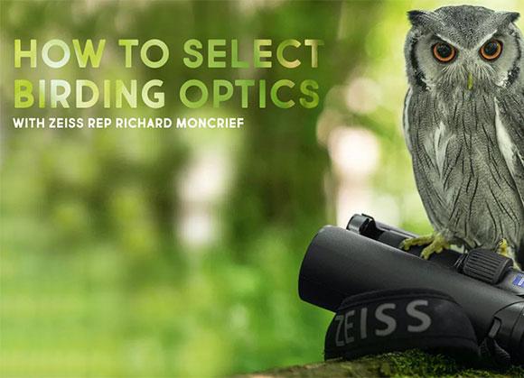 How to Select Birding Optics